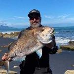 Snapper caught west coast raglan off the grid accomodation